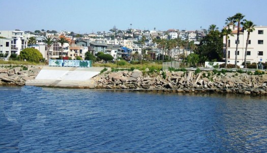 Going Batty: Take Staycation, Playa Del Rey, California?
